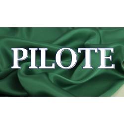 PILOTE  (17)