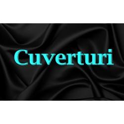 CUVERTURI DE PAT (10)